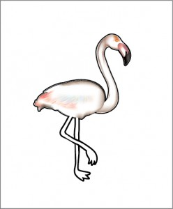 Standing Flamingo only